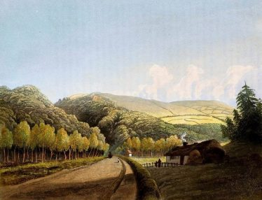 Glen of the Downs 1835 | Greystones Guide