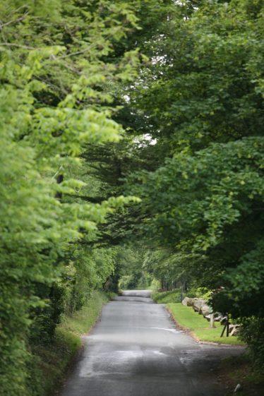 Kindelstown Road  | Delganyheritagevillage.com