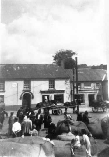 Wool sale, Donard, 1959 | Photo Edward Allen C 2020