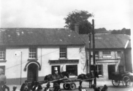 Wool sales in Donard in the 1950s