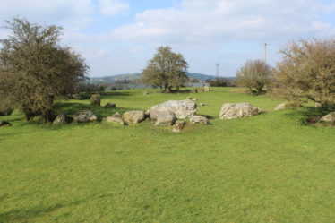 Castleruddery Stone Circle | Photo Jim Butler C 2020