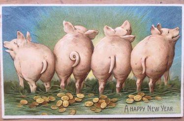 Swine Flu | Wikimedia commons