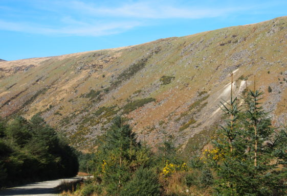The Geological Heritage of County Wicklow - Glenmalure