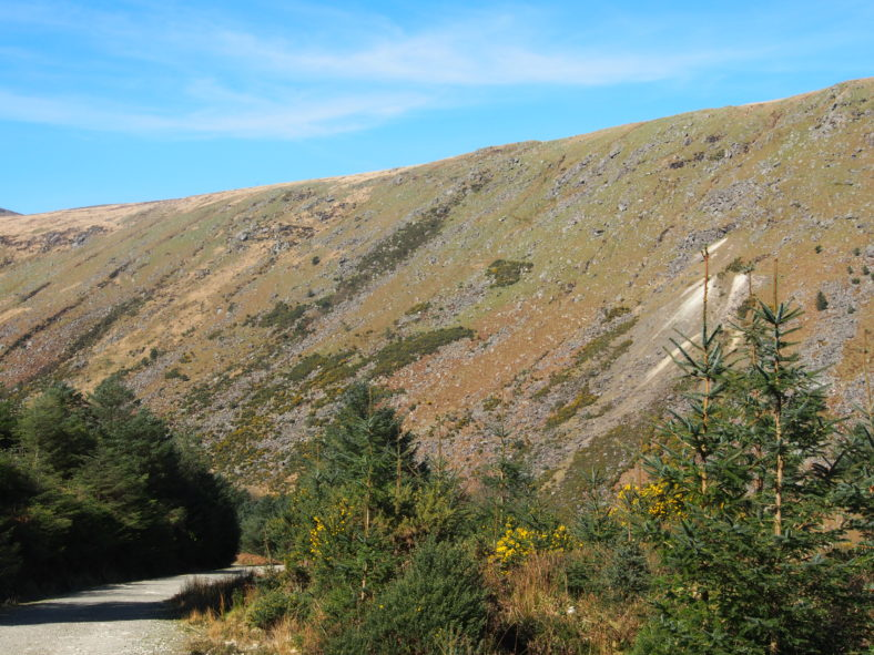 Glenmalure Valley in summer | Joan Kavanagh