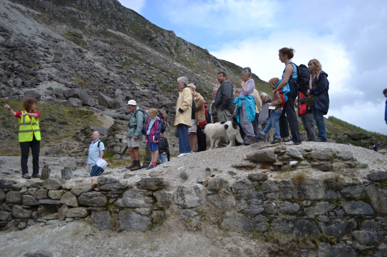 Guided walk and talk by Dr Sharron Schwartz during Heritage Week 2012 | Joan Kavanagh