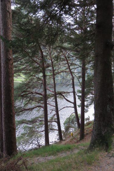 Upper Lake, Glendalough | Jane Clarke
