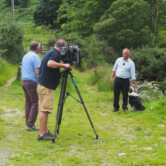 Pat Dunne with his faithful sheepdog being interviewed by Niall Martin with Colm on camera | Joan Kavanagh