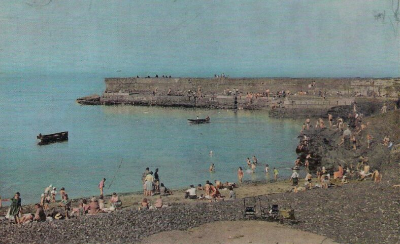 Growing population in evidence - summer at the old harbour   Old postcard.