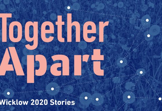 An introduction to Together Apart - Looking for Your Wicklow 2020 Stories