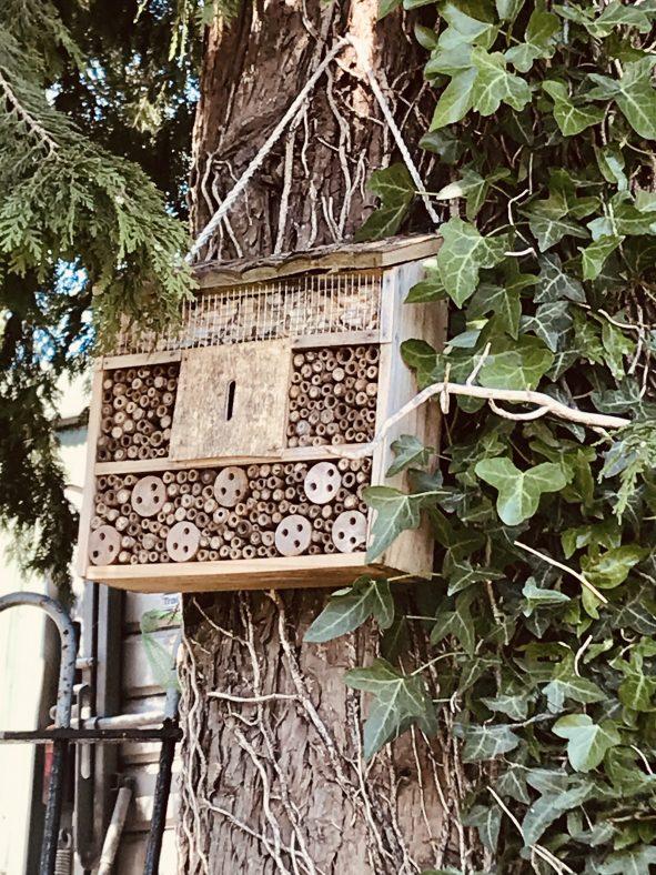 Michael's Bug Hotel