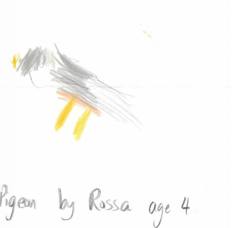 Pigeon by Rossa age 4