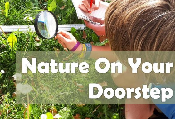 Nature on Your Doorstep