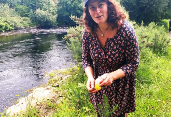 Foraging - forget empty shelves in supermarkets - there is food all around you
