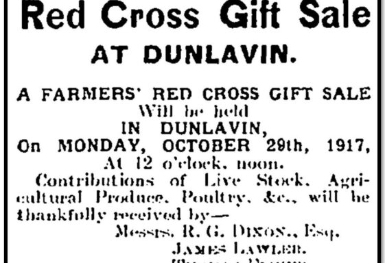 The Impact of World War One on the Dunlavin region by Chris Lawlor