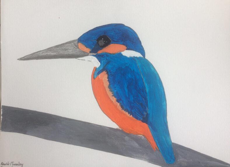 Kingfisher painting | David Twamley