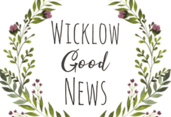 Wicklow Good News Stories - A Collection