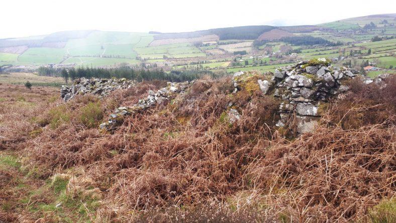 Building remains at Macreddin East | Deirdre Burns