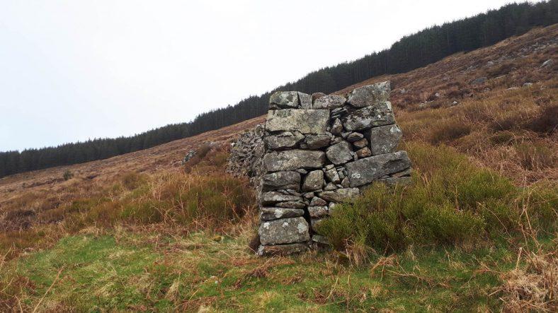 End of wall at Macreddin East | Deirdre Burns