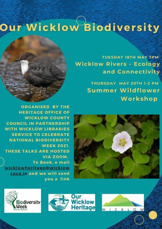 Wicklow Biodiversity Week   Deirdre Burns