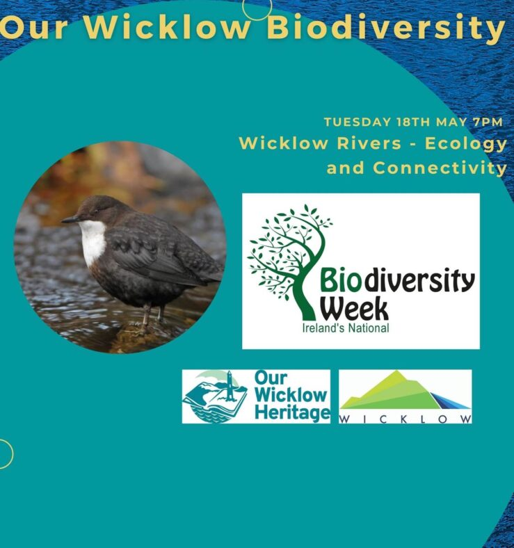 Wicklow Rivers  - Exploring ecology and connectivity