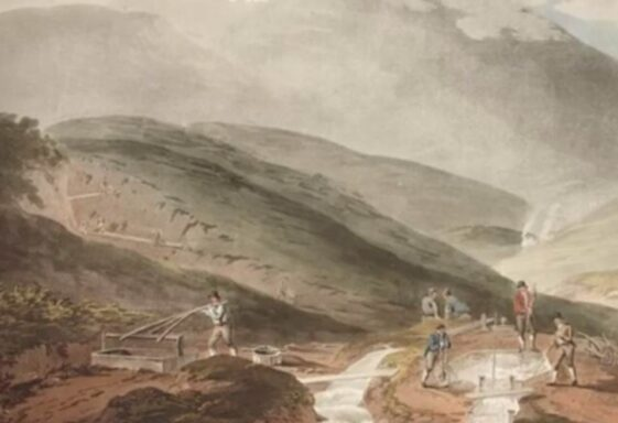 The Wicklow Gold Rush