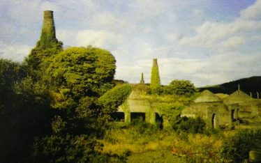 19c Engine Houses at Ballymurtagh West Avoca | Geological Survey of Ireland 1998