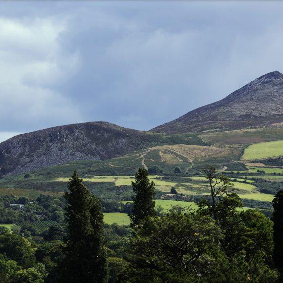 A View   Maria McCormick
