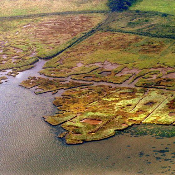 Aerial View | Colum D'Alton