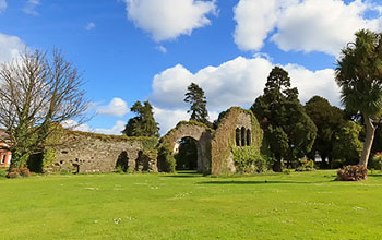 The Abbey Grounds Wicklow
