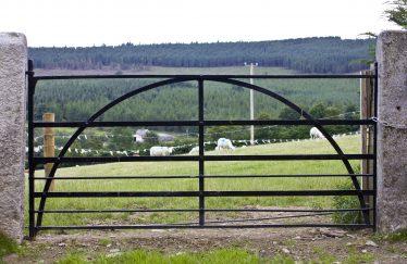 Ballymanus View through Gate   PURE Mile