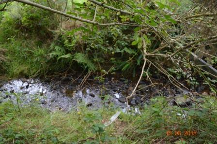 The River 'Ann'/'Slang'