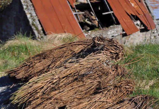 Evidence for thatch in Ballyknockan