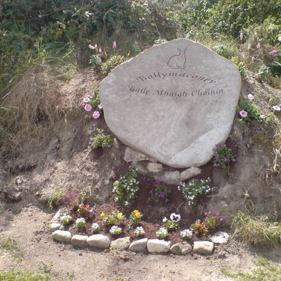 Ballymaconey sign and rockery- with rock engraved rabbit   Rathdangan Community Council