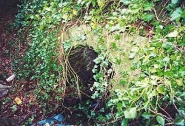 St. Patrick's Well (Before)