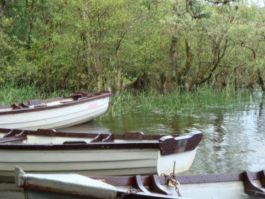 Boats moored on reservoir | Roundwood Tidy Towns