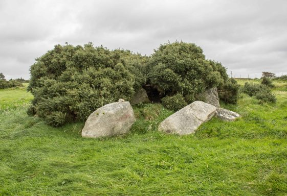 Carrig Wedge Tomb