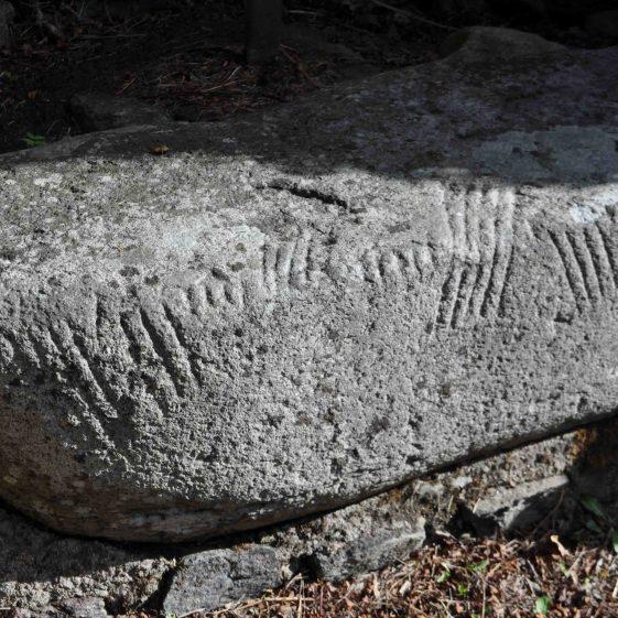 Ogham stone at Castletimon, near Barndarrig