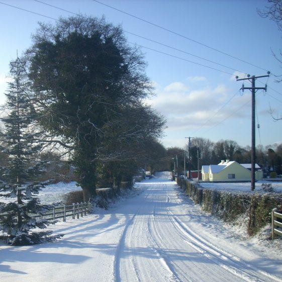 The Christmas tree in the snow | Ballinglen Development Committee