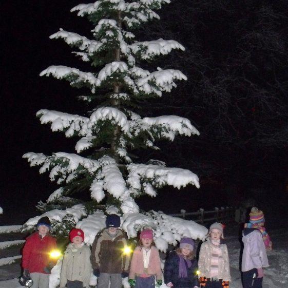 Santa's helpers | Ballinglen Development Committee