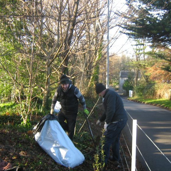 What it takes | Rathdrum Tidy Towns