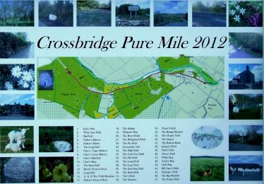Crossbridge Pure Mile map   PURE Mile