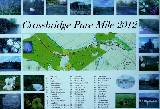 Crossbridge - PURE Mile