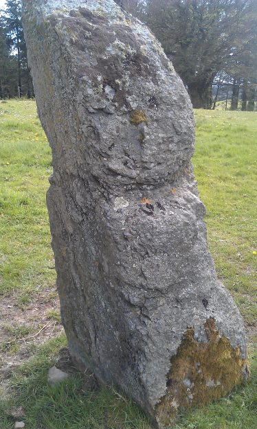 The newly discovered standing stone at Castletimon