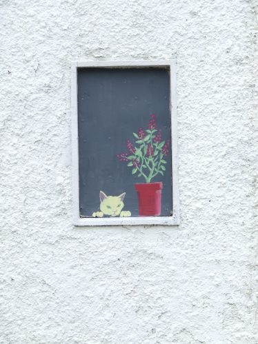 Window on Old Building | PURE Mile