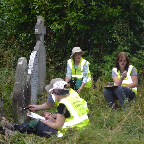 Volunteer Survey in Action at Glendalough   D. Burns