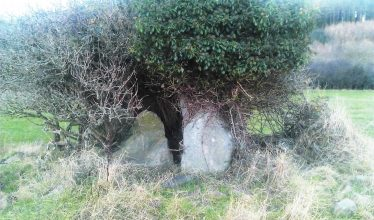 Dolmen at Bonagrew Crossroads | Brittas Bay Coast Care