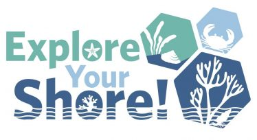 Click on image to go to Explore your Shore website