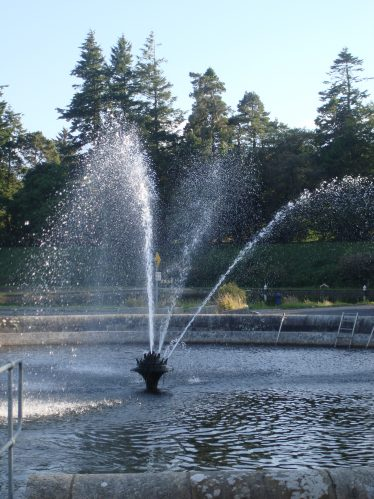 Fountain at Waterworks | Roundwood Tidy Towns