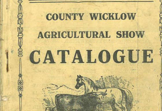 County Wicklow Agricultural Show at Wicklow