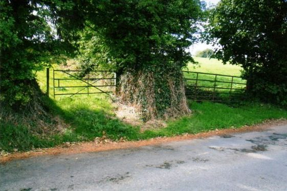 Gates to two fields | Rathdrum Tidy Towns